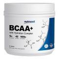 [헬스보충제] 뉴트리코스트 BCAA 하이드레이션 컴플렉스 대용량 파우더 500g